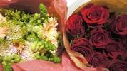 2014.10.17_Flowers_01