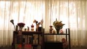 2014.10.17_Flowers_25